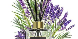 Top 10 Best Home Fragrances in 2019 – Reviews