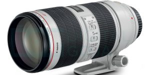 Top 10 Best Canon DSLR Lenses in 2019