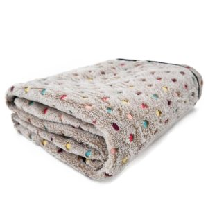 PAWZ Road Pet Blanket