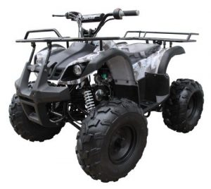 TAO TAO TFORCE 110cc Fully Automatic