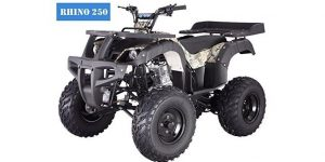 Four Wheelers for Kids & Adults