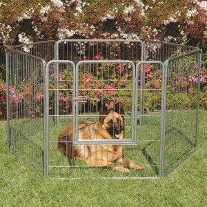 Precision Pet Courtyard Dog Kennel Exercise Pen