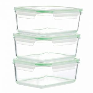 Kinetic GoGREEN Glassworks Glass Food Storage Container