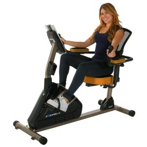 Exerpeutic Magnetic Recumbent Bike