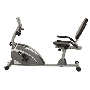 Exerpeutic Magnetic Recumbent Bike-1000 High Capacity