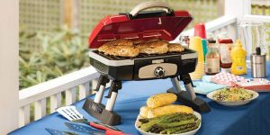 Top 10 Best Portable Gas Grills in 2020 – Reviews & Buying Guide