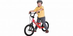 Top 10 Best Bikes for Kids in 2018 – Reviews – Gift for Kids