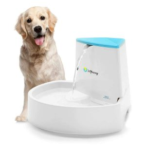 isYoung Dog Fountain Water Dispenser Pet Fountain