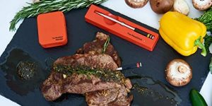 Top 10 Best Wireless Meat Thermometers in 2020 – Reviews