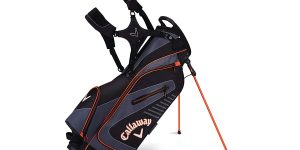 Top 10 Best Golf Bags in 2020 – Reviews