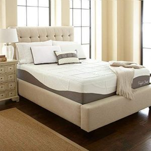 Elegance Memory Foam Mattress by Perfect Cloud (Twin)