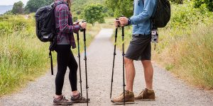 Top 10 Best Trekking Pole in 2019 – Reviews